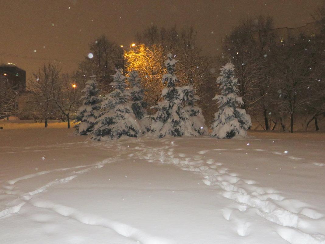 Снежный январь! - Ирина Олехнович