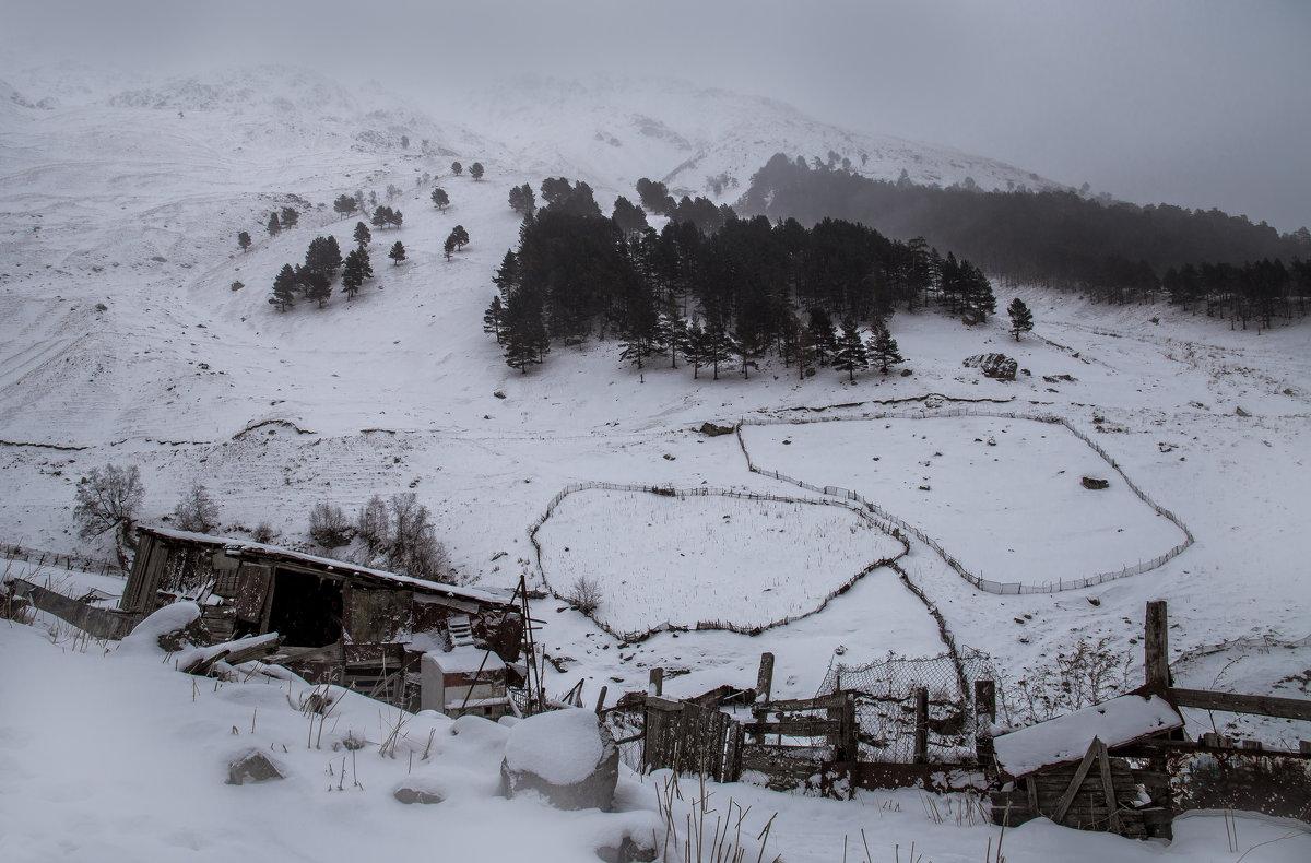 На пологих горных вершинах - Zifa Dimitrieva