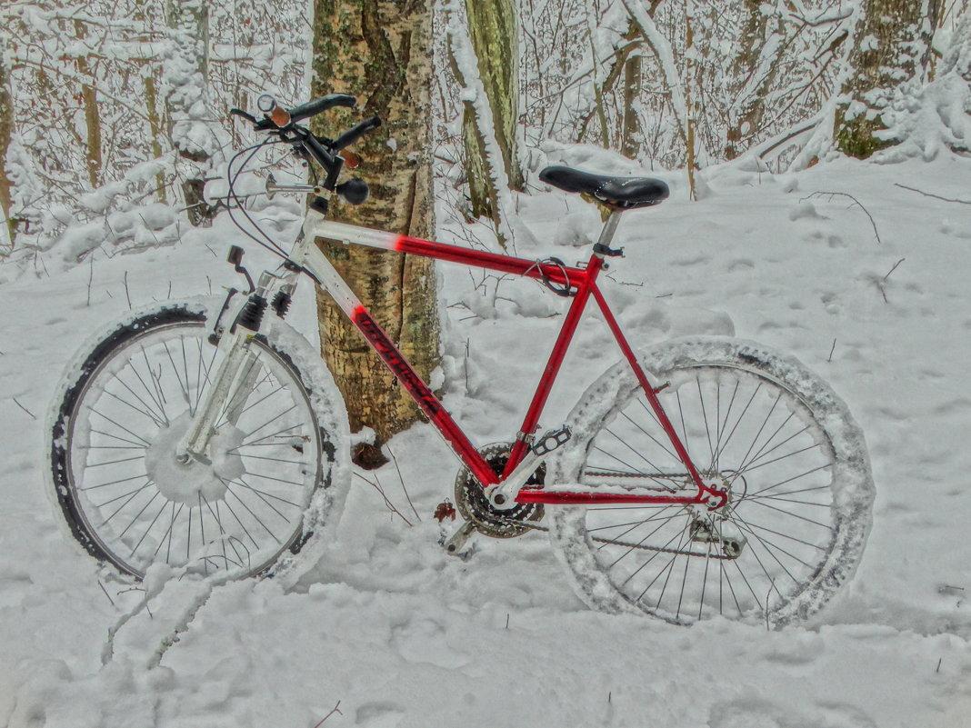 мой снегоход - Михаил Жуковский
