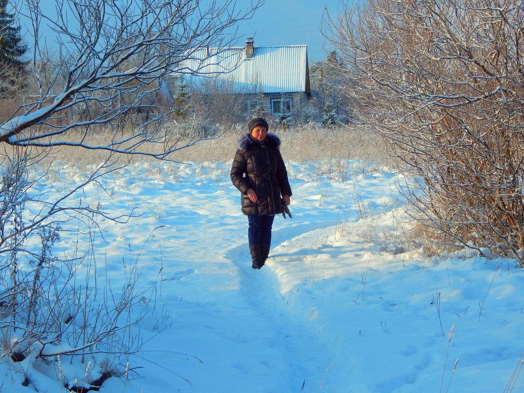 Зимняя прогулка - veera (veerra)