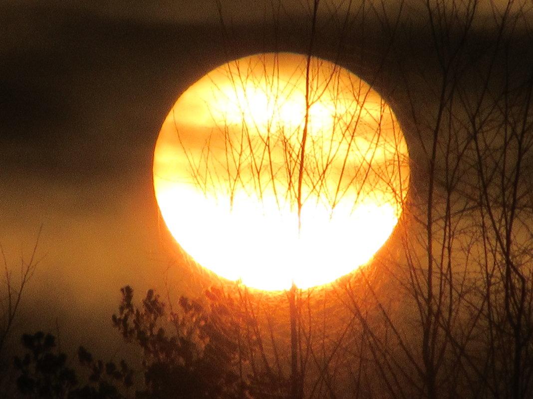 Солнце - Mariya laimite