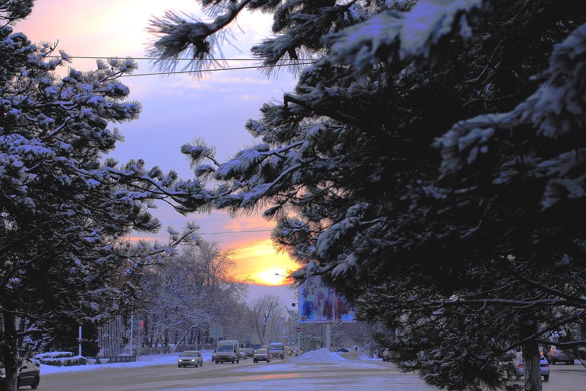 Зимнее солнце - Юрий Гайворонский