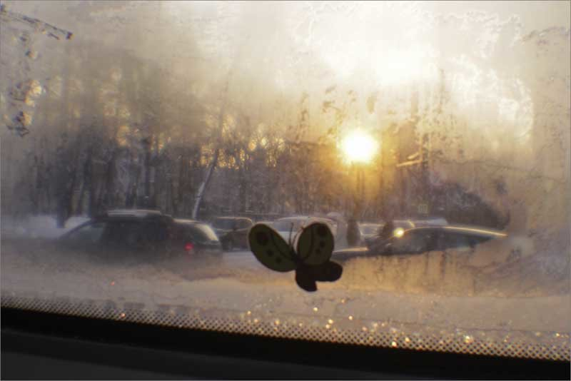 Автобусное окно - galina bronnikova