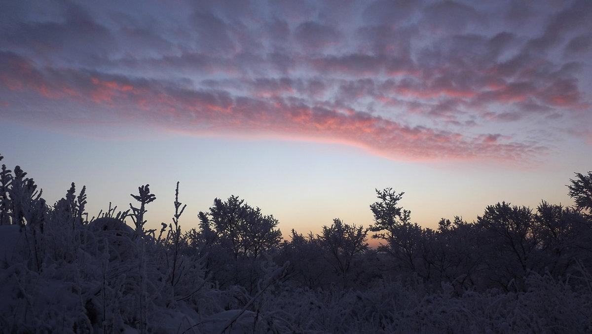 начало дня - svetlana