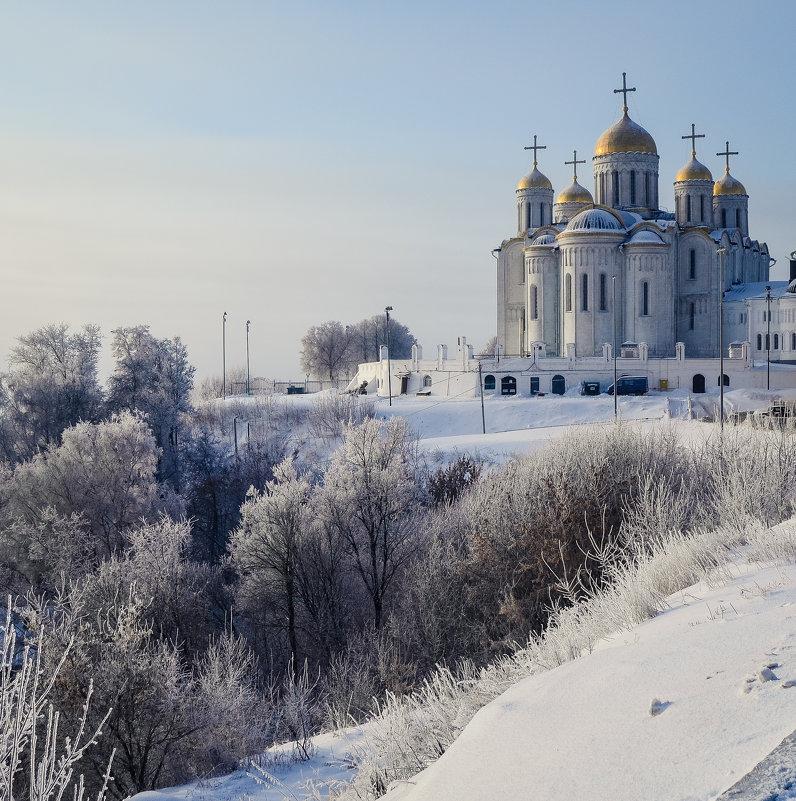 Во власти зимы - Дарья Киселева
