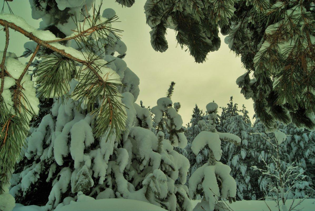 зимние зарисовки - Константин Бабкин