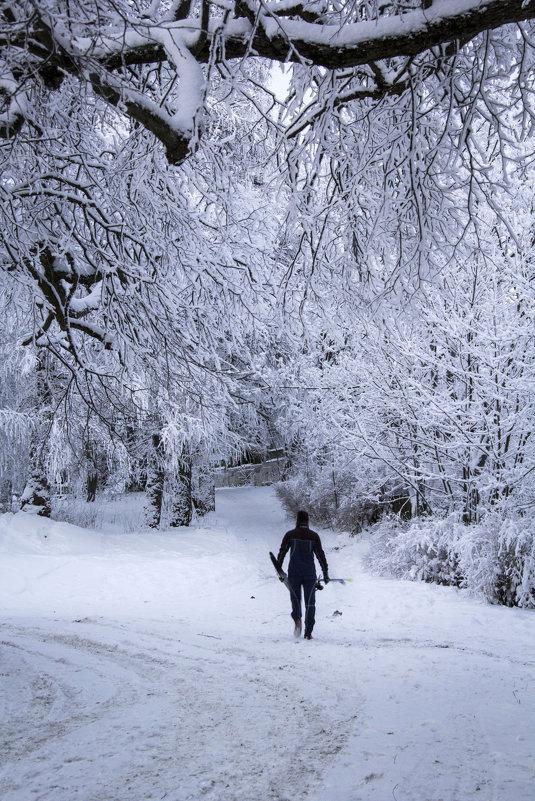 Лыжник - Aнна Зарубина