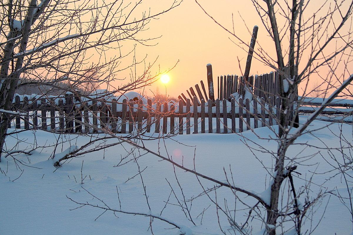 Морозным утром. - Николай Масляев