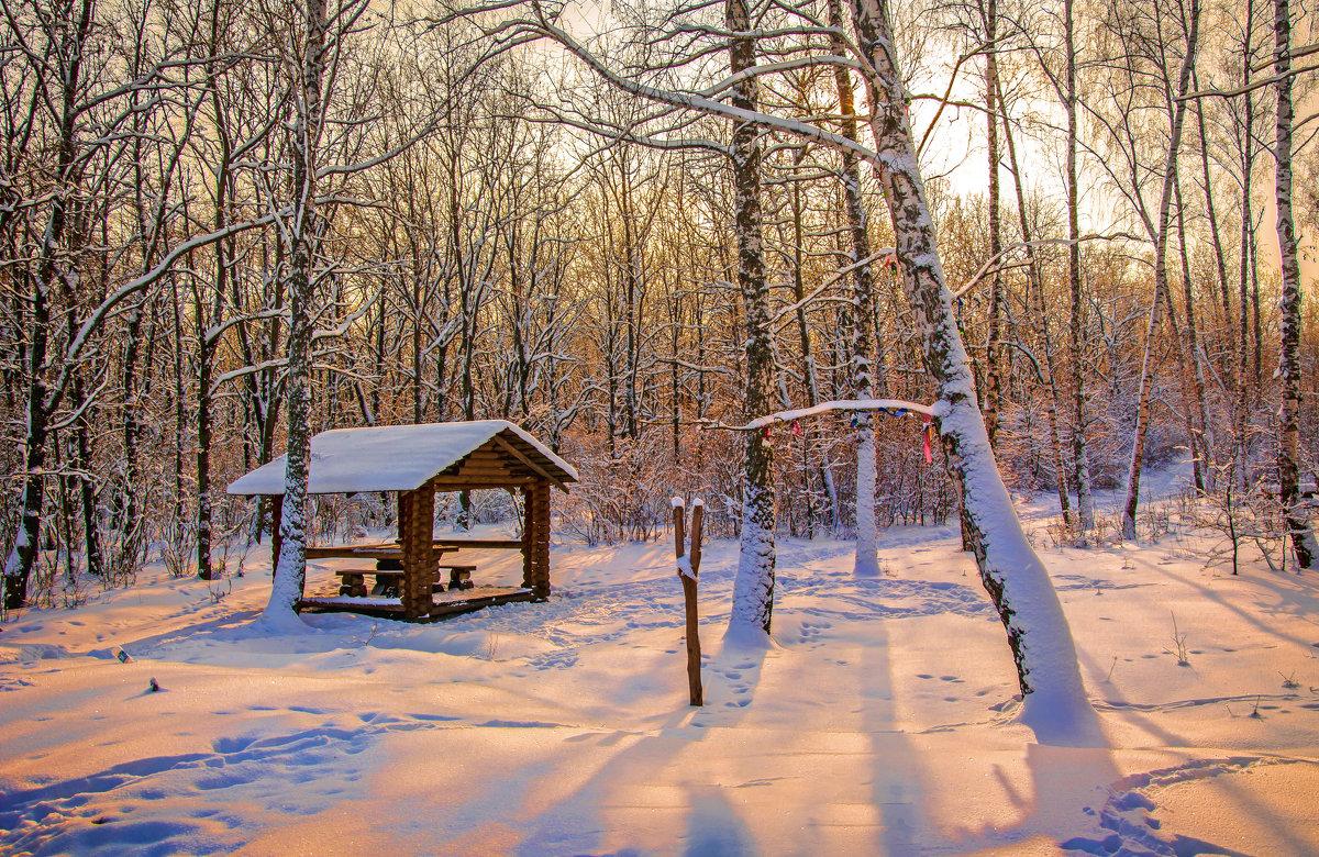 Зимний вечер - Мария Богуславская
