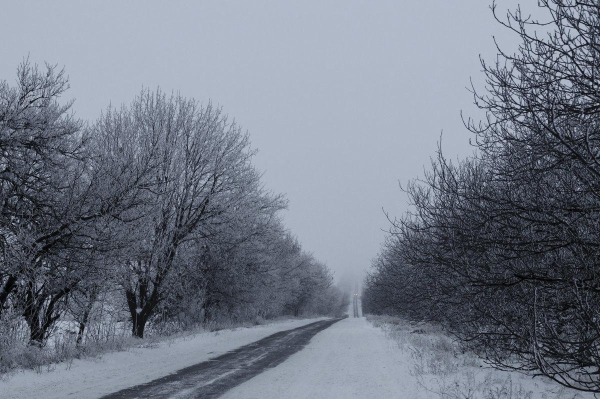 Даже сквозь туман и холод иди к тому, кто зажёг для тебя огонёк любви - Алеся Пушнякова