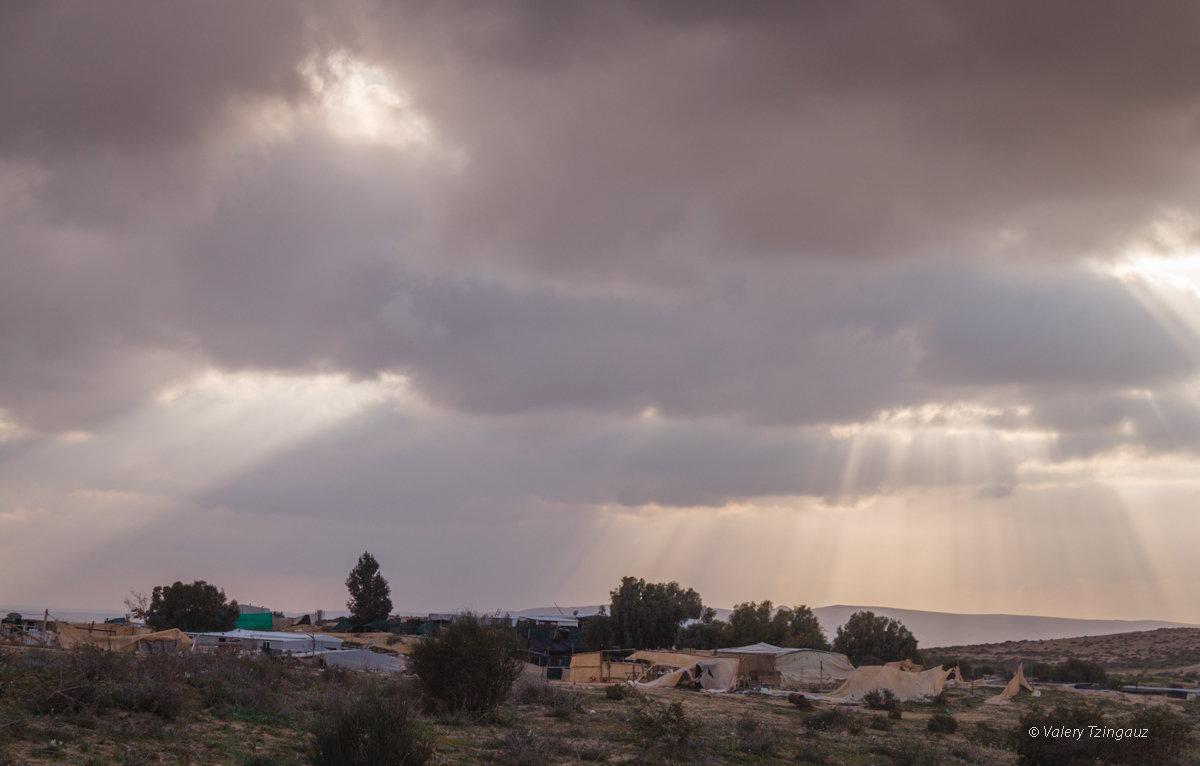 закат в краю бедуинов - Валерий Цингауз