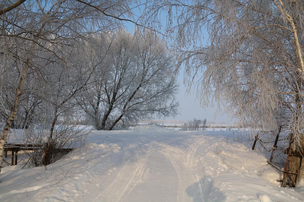 Зима, Лопандино... - Владимир Холодницкий