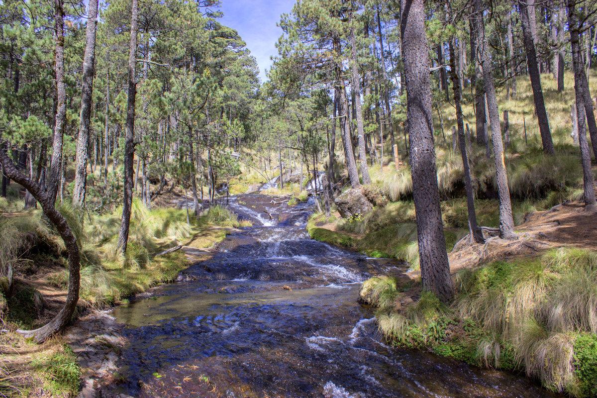 Национальный парк Izta-Popo - Elena Spezia