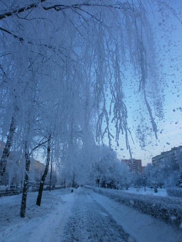 Зима в моём городе... - Алёна Савина