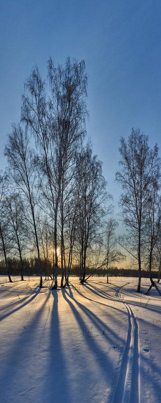 Приглашаю на лыжню! - Николай Мальцев