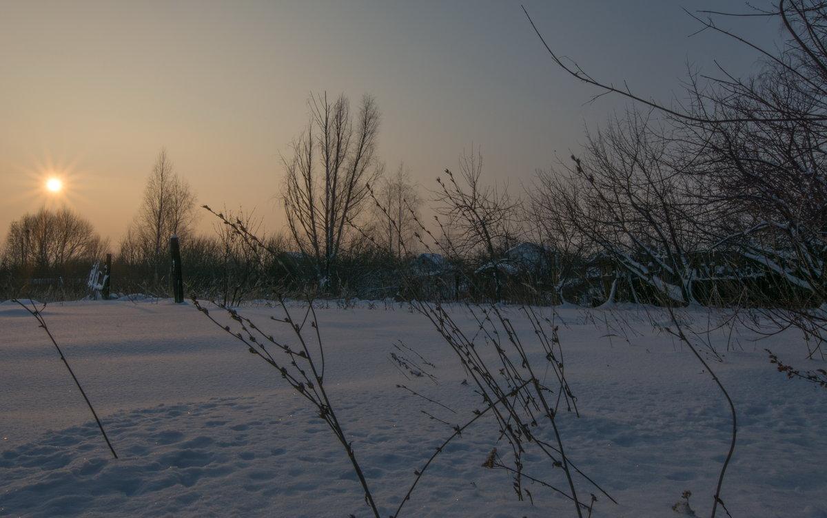 снег искрился на морозе пред закатом розовым безмолвным - Алексей -