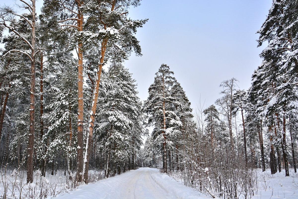 Зима - Сергей