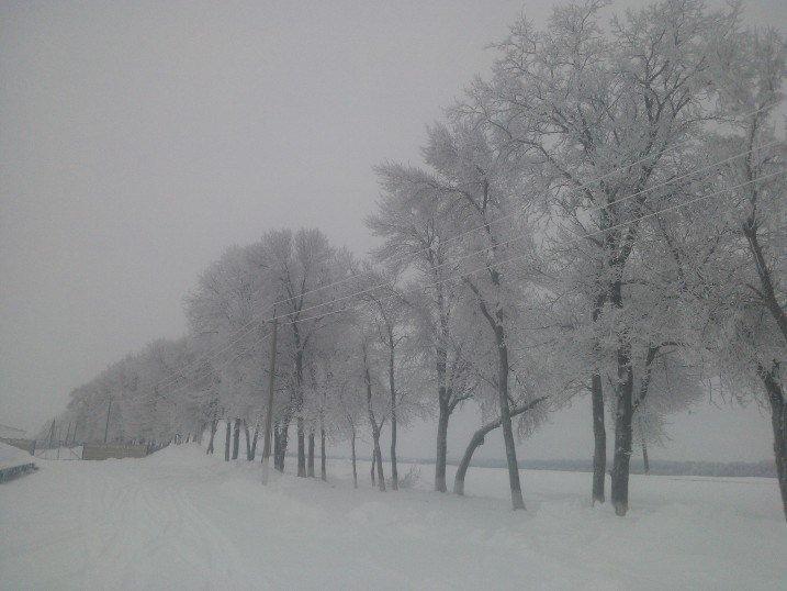 Зима2016 - Надежда