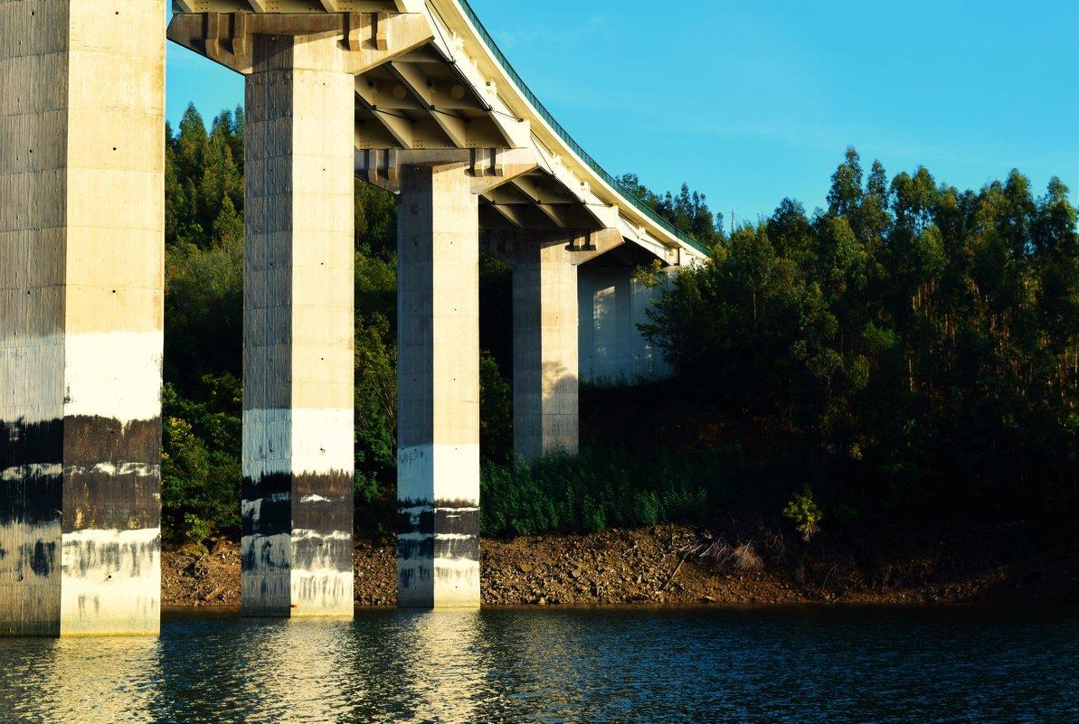 Мост, идущий в лес - Karolina