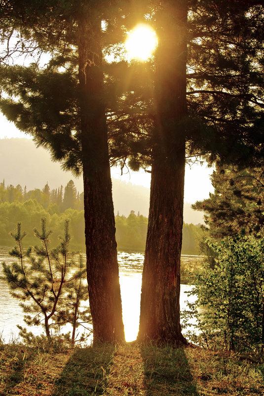 Солнце на Катуни - юрий Амосов