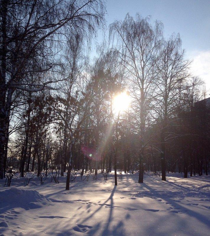 Морозный день - Лариса Корженевская