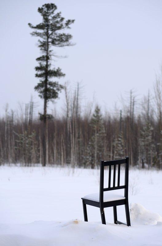 Место раздумий в зимнюю пору - Михаил Плецкий