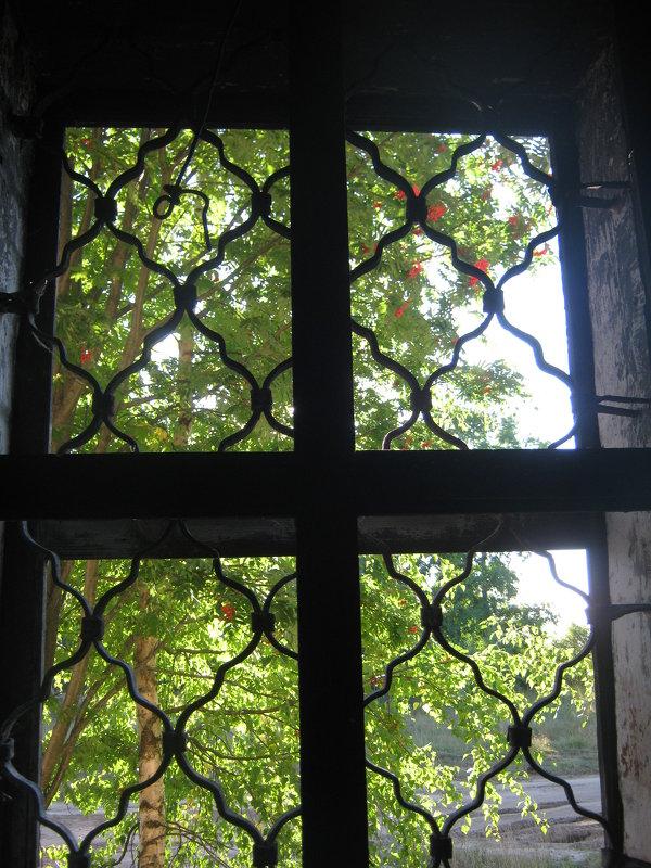 окно - Наталья Зимирева
