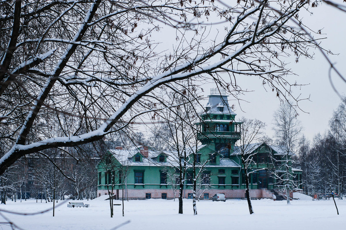 Дача Бенуа - зима - Александра К