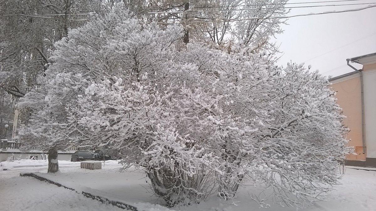 Снежность 3 - Сергей Трусов