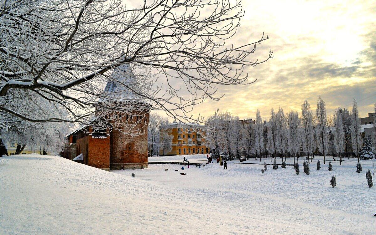 Смоленск в январе 2016 - Милешкин Владимир Алексеевич