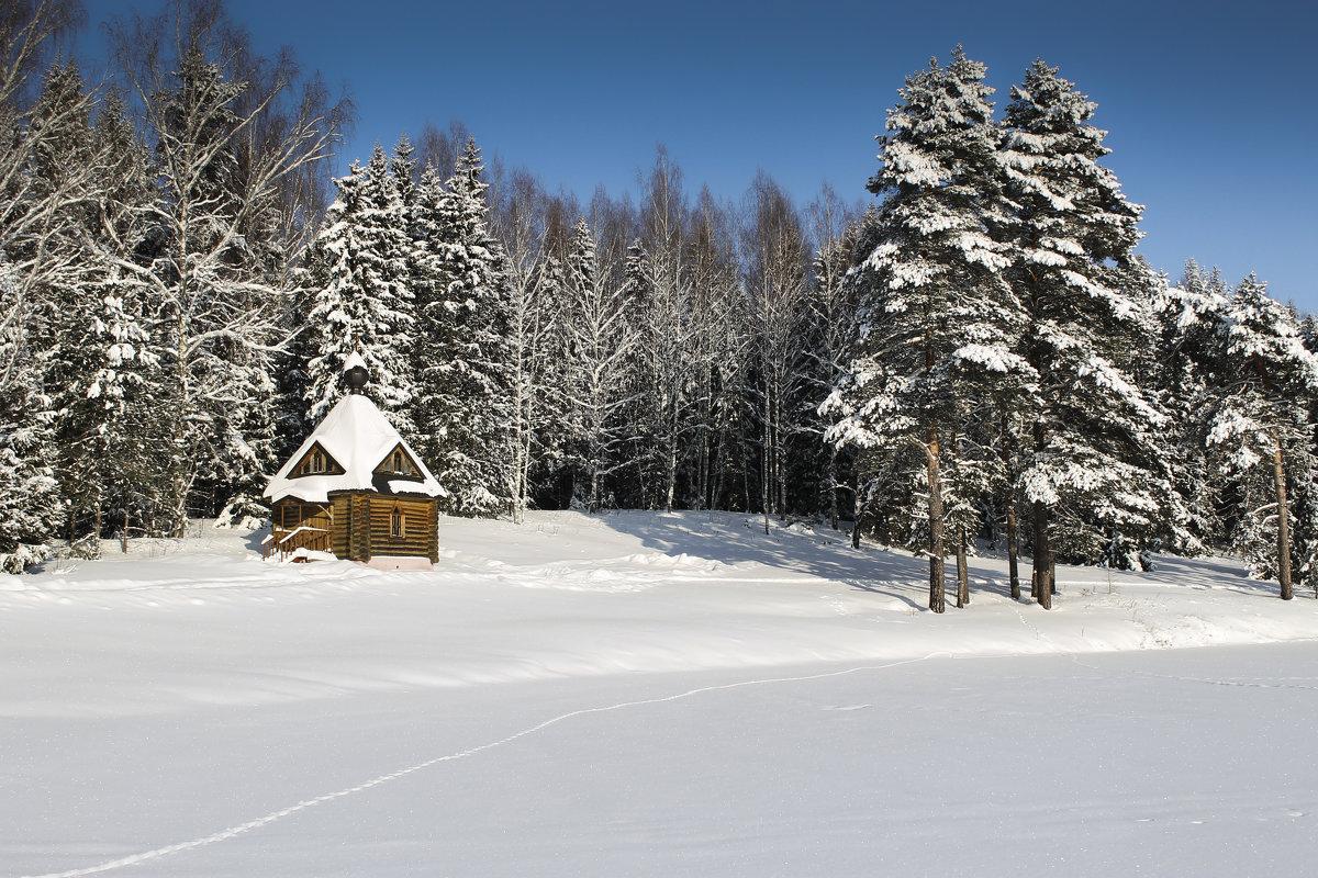 Часовенка в лесу - Ольга Мансурова