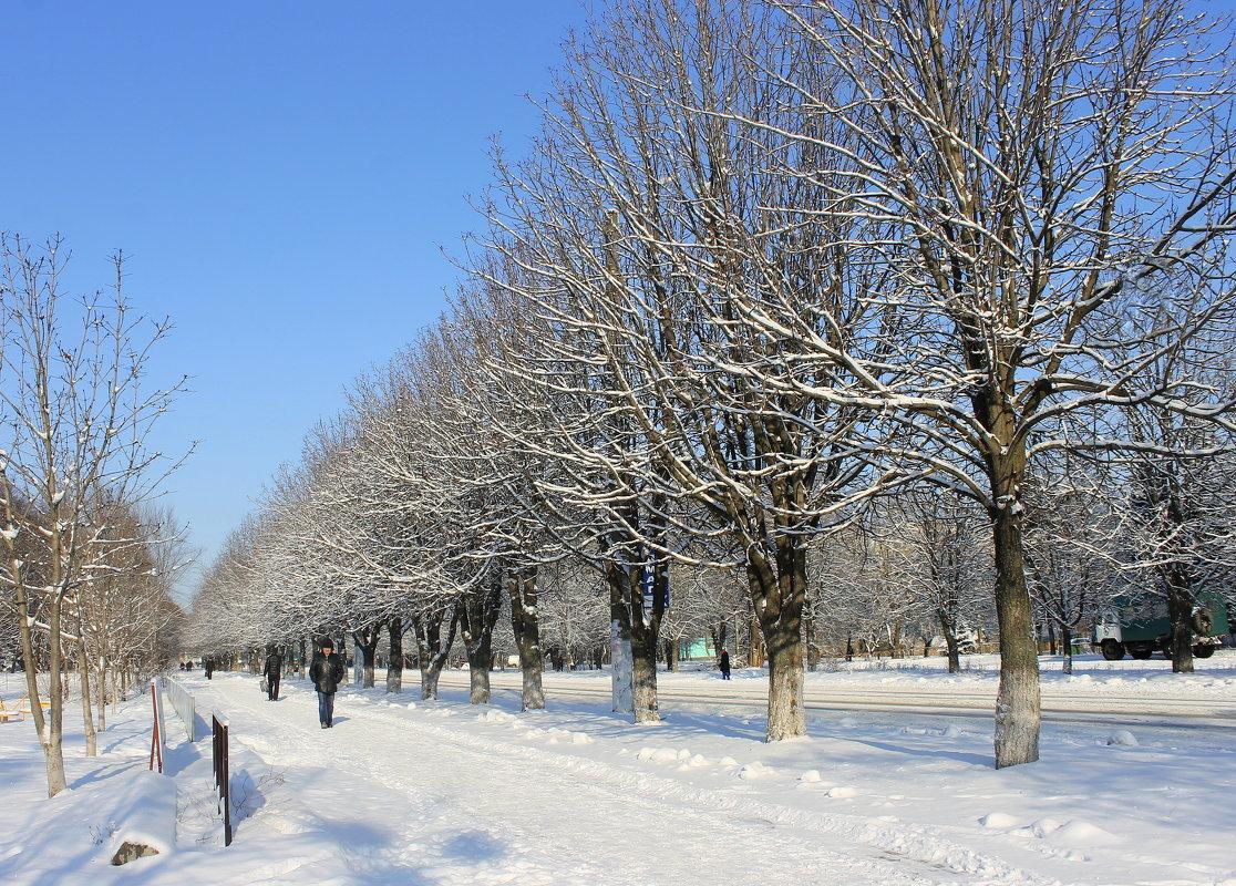 Скользя  по тротуару зимнему... - Валентина ツ ღ✿ღ