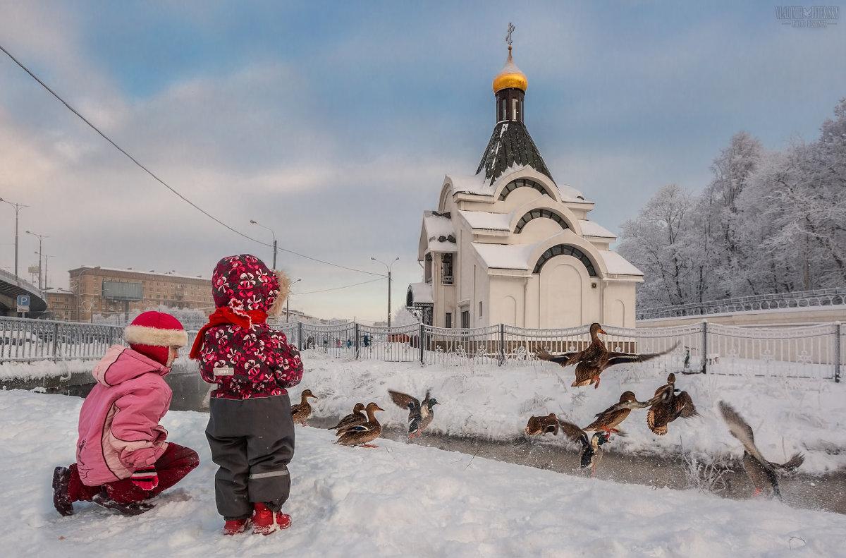 ...И наши внуки в добрый час из мира вытеснят и нас... (А.С. Пушкин) - Владимир Колесников