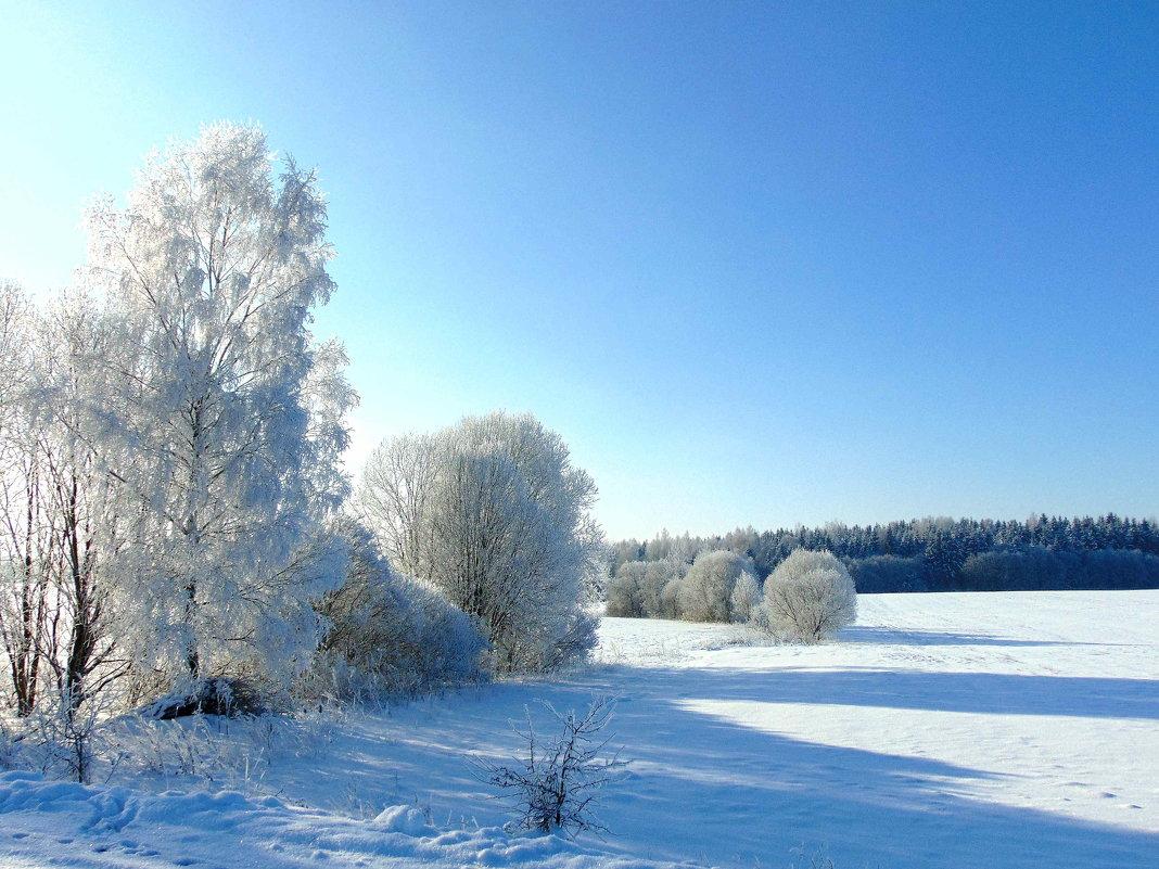 Зимним морозным днем - Anna P