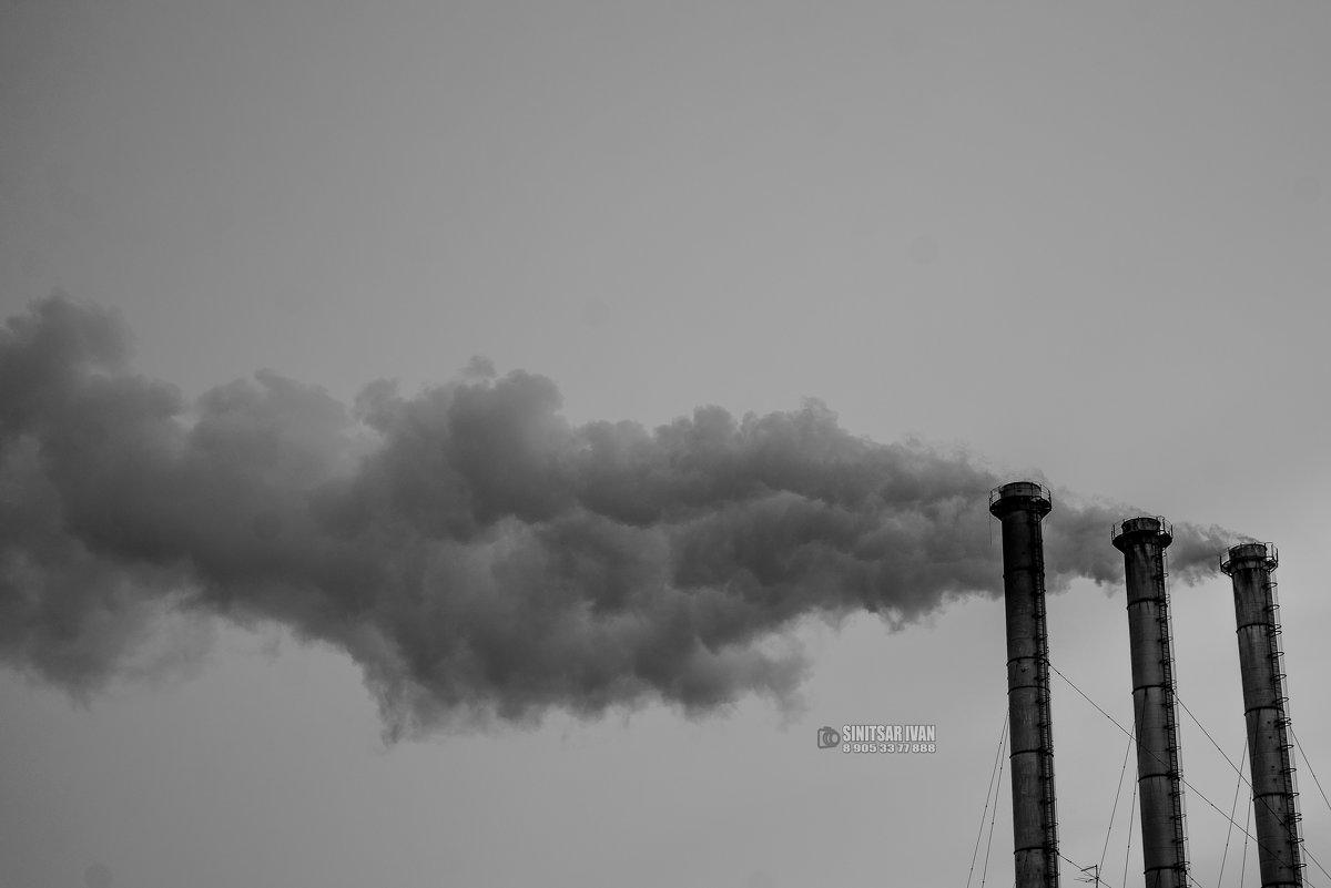 Немного об экологии - Иван Синицарь