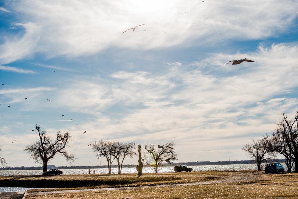 На озере в конце января - MVMarina