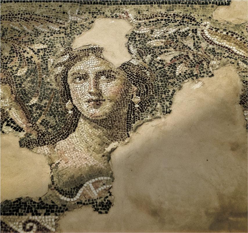 Галилейская мона Лиза. Фрагмент - Shapiro Svetlana