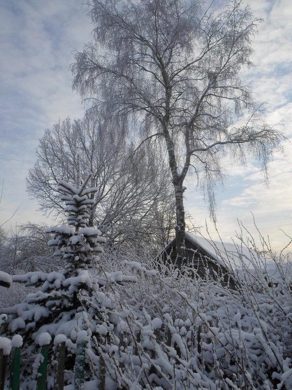 Красоты зимы - BoxerMak Mak