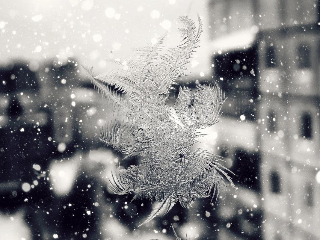 Морозный узор!!! - Наталья