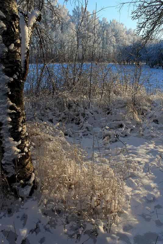 После снегопада - Наталья Лунева