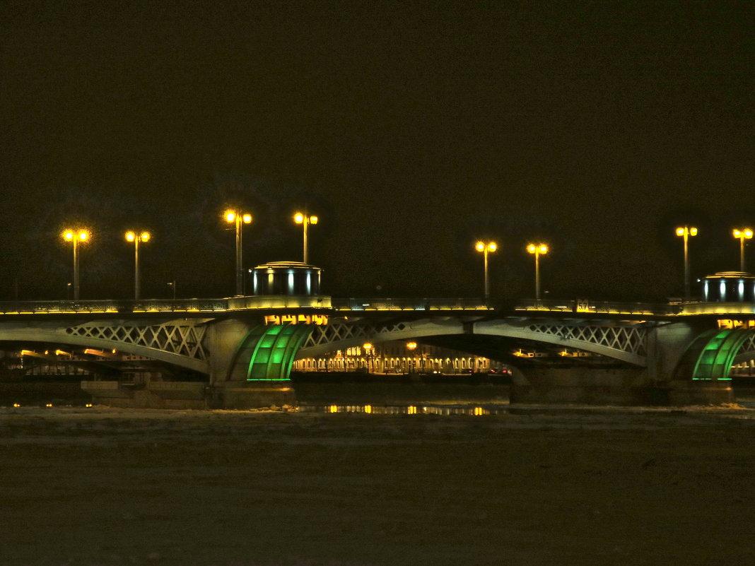 Благовещенский мост ночью - Елена