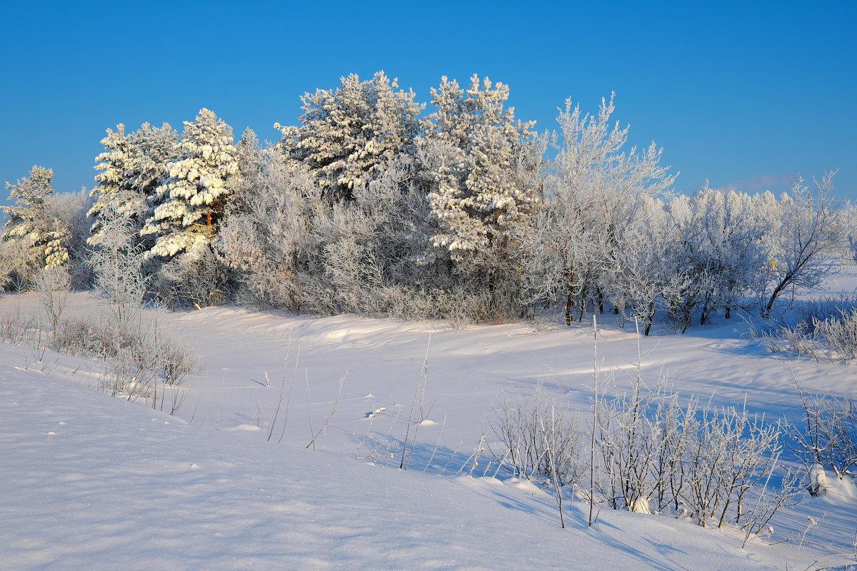 В зимнем убранстве - Валерий Шибаев