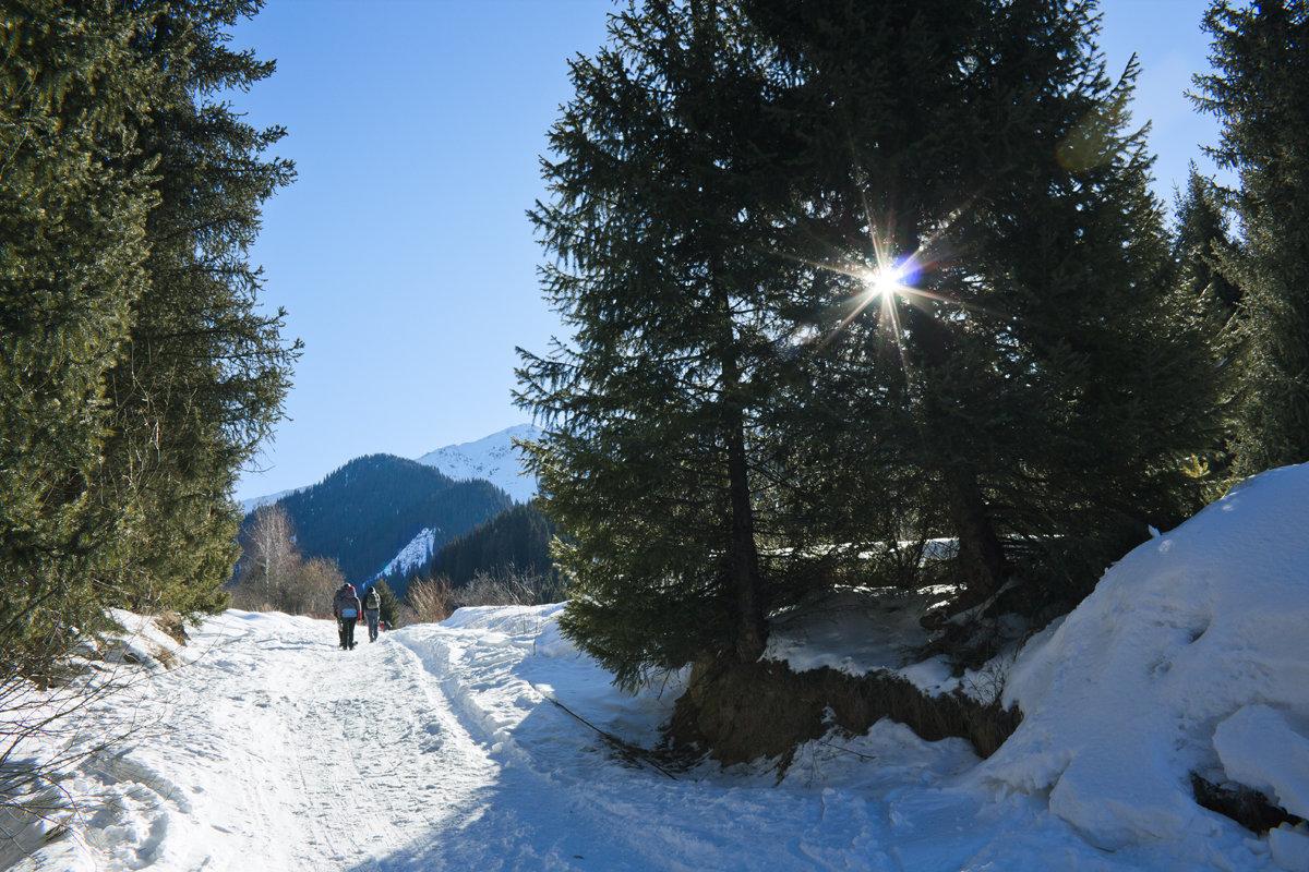 Горы, солнце, снег! - Алексей Большаков