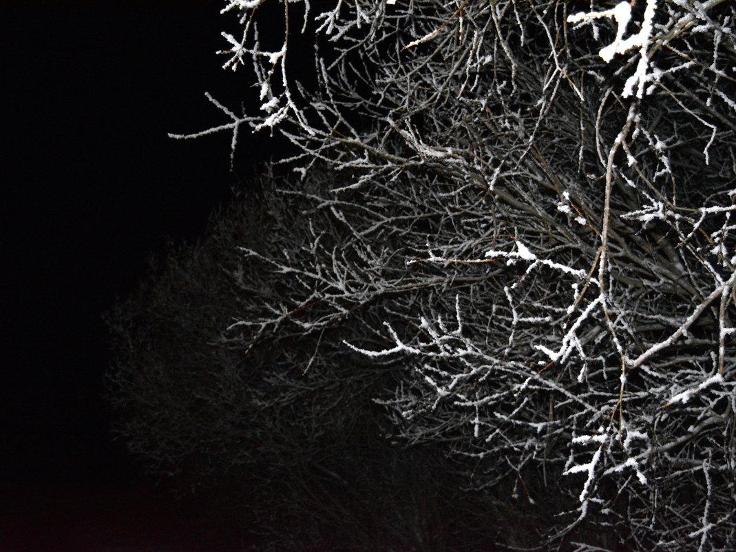 Темень...в темном месте города Северодвинск, и в темнный вечер)) - Михаил Поскотинов
