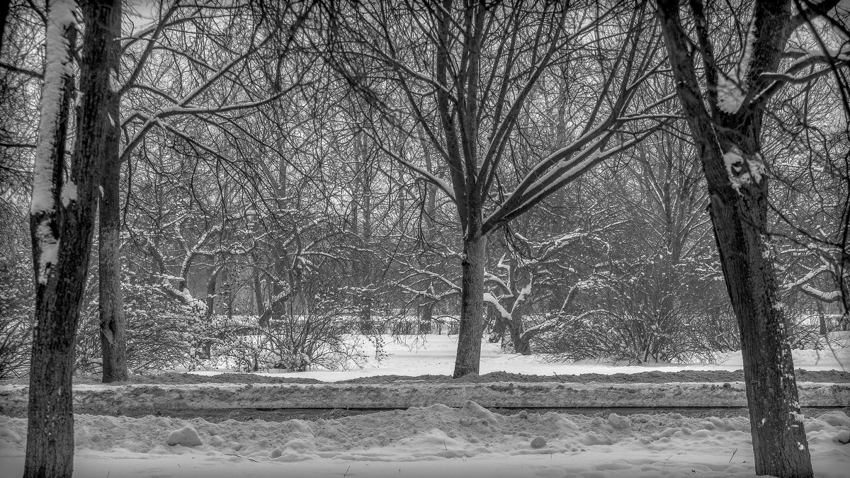 Зимушка-зима - Рома Григорьев