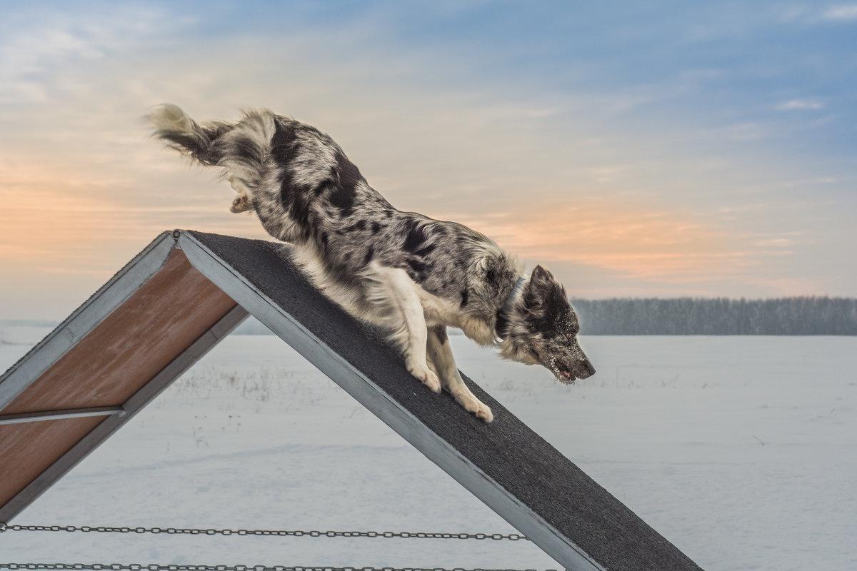 Быстрее ветра - Сергей Степанов