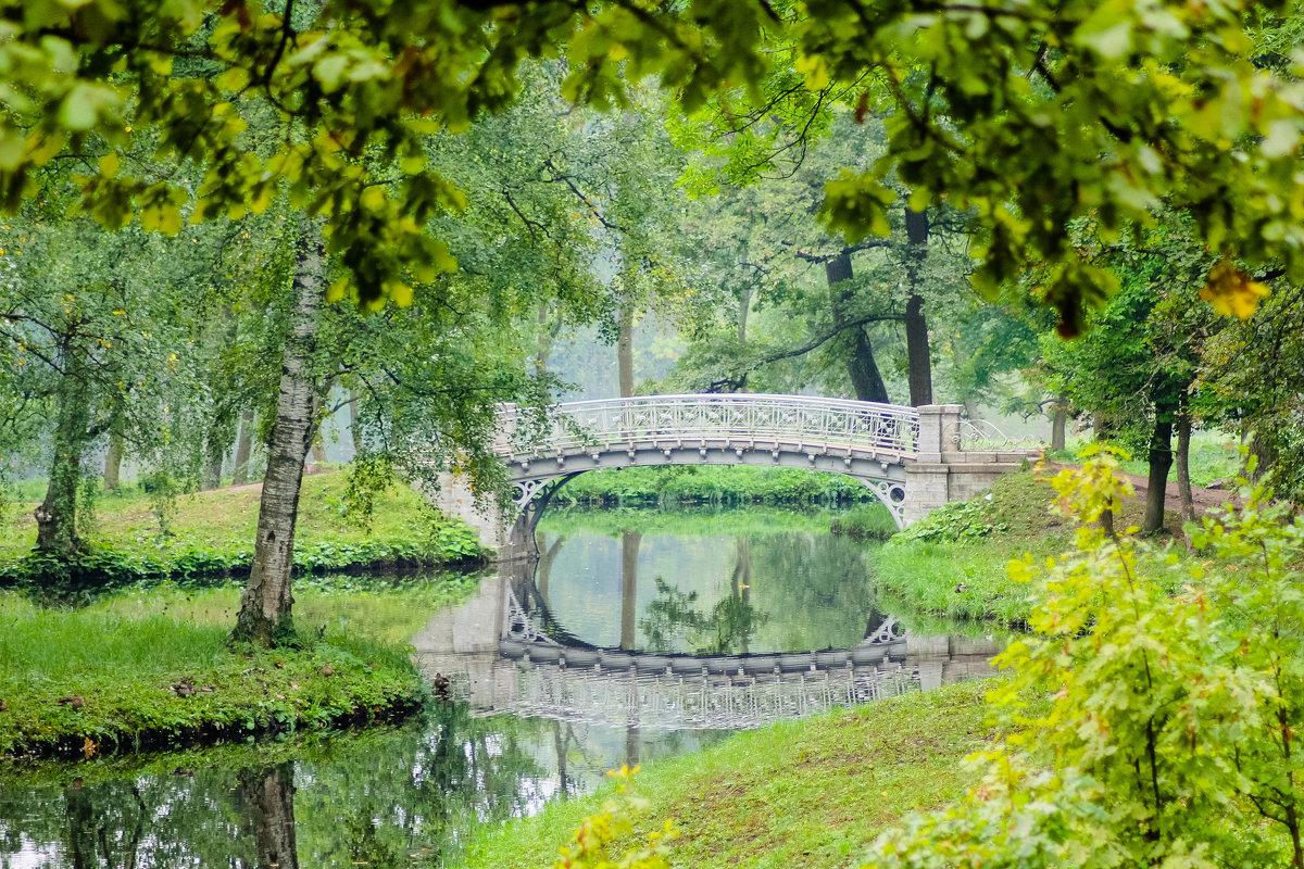 Зеленая осень - Алёнка Шапран