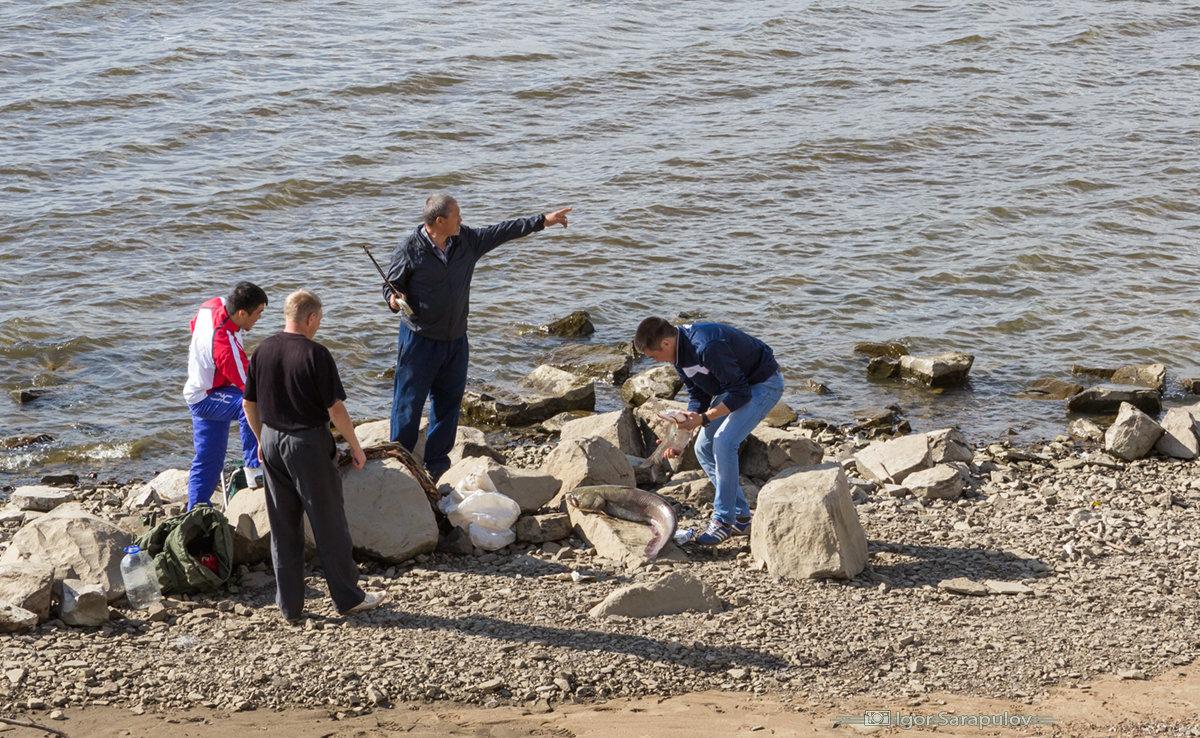 рыбалка на набережной в хабаровске