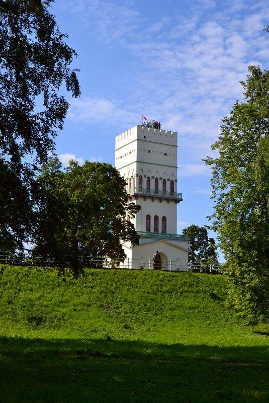 Взятие Белой башни - Ольга