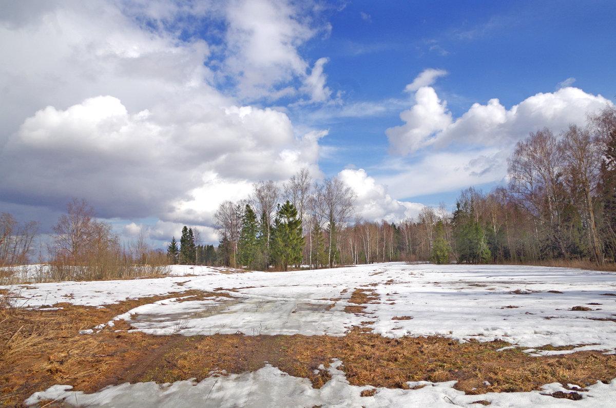 Еще в полях белеет снег - Валерий Талашов
